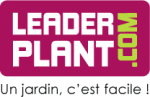 Leaderplant
